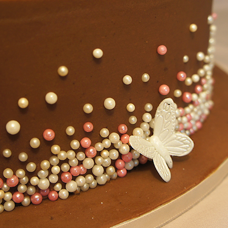 Chocolate Butterflies and Flowers